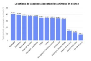 locations vacances pets friendly