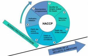 Comment mettre en place un plan HACCP?